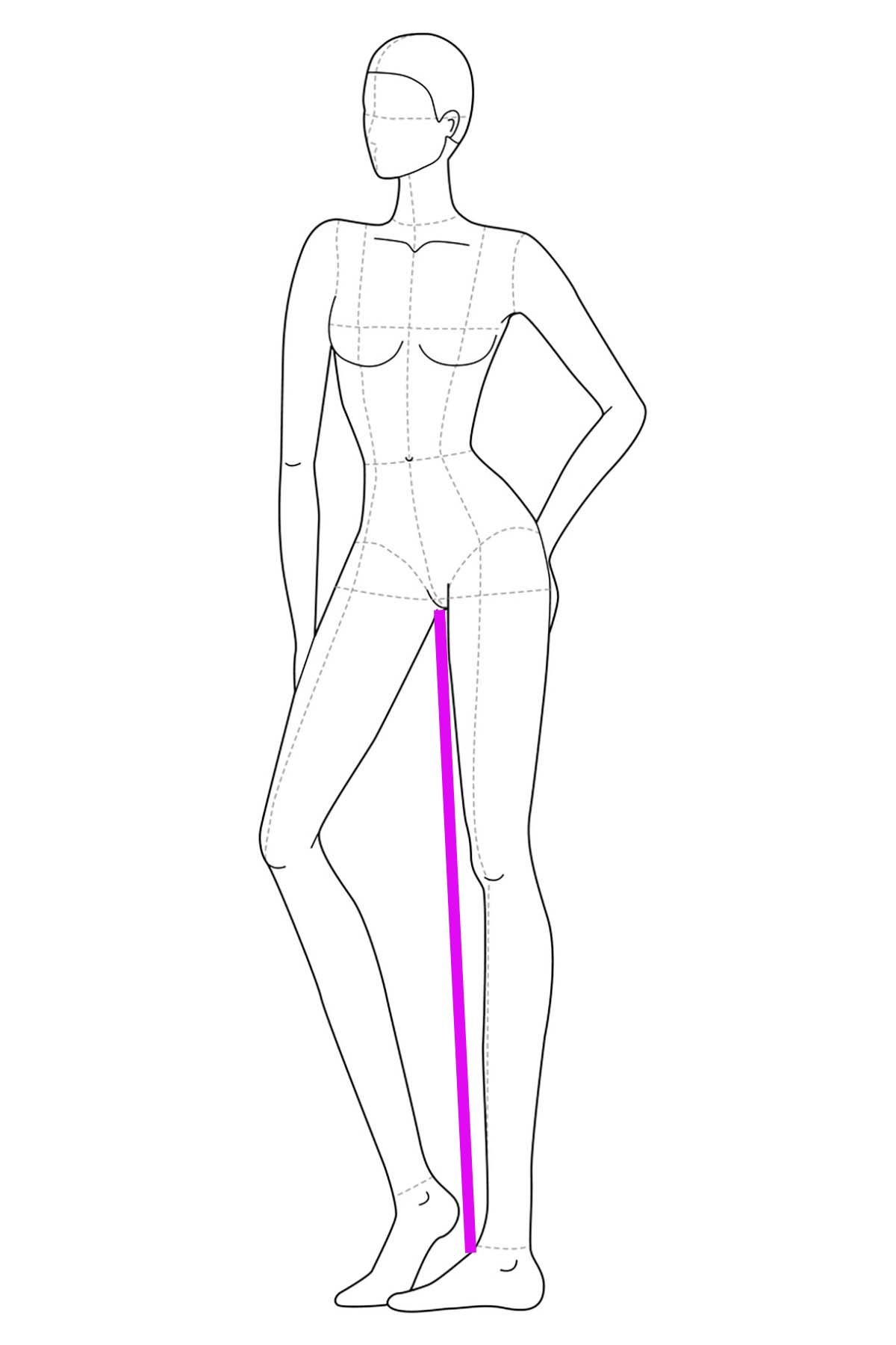 A drawing of a female body, front view. A bright pink line has been drawn on it to indicate inseam measurement.
